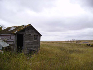 Homestead Lost – 4